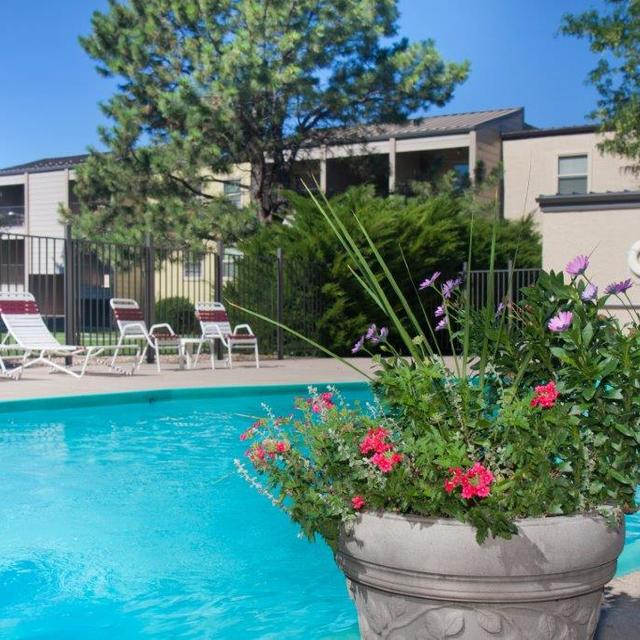 Sterling Heights Apartments - Pool