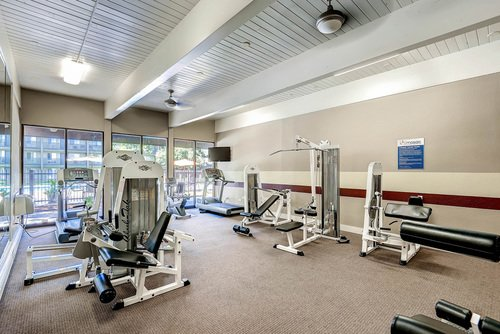 Mosaic Apartments Fitness Center